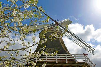 Vom Wind getrieben - Friesische Mühlentour Kurztrip